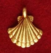 Seashell Pendant  EP05